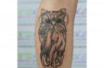 Тату Осьминог — Кот
