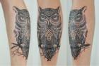 Тату Сова — Owl Tattoo
