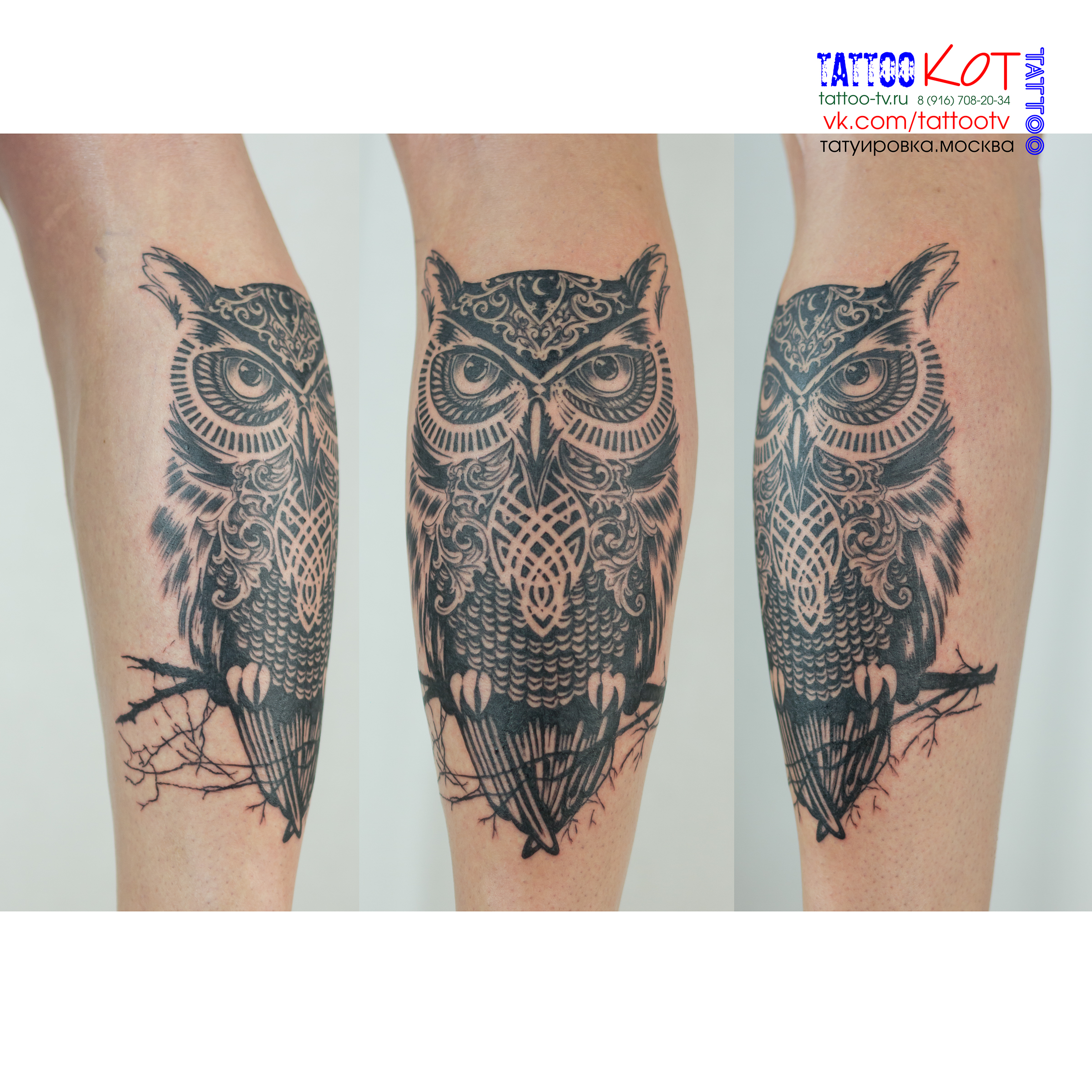Тату Сова - Owl Tattoo